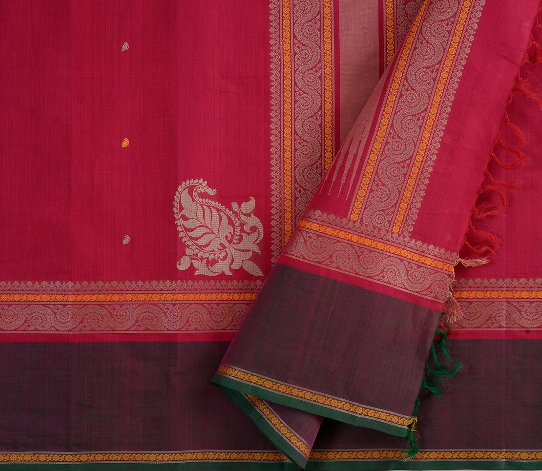 Kanchi Cotton Saree in Pink with tall border