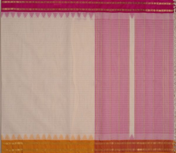 Elegant Kanchi cotton silkborder weavemaya Bangalore India Maya white 10162108 1